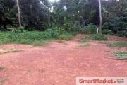 2 Land Blocks for sale at Gampaha City Limit.