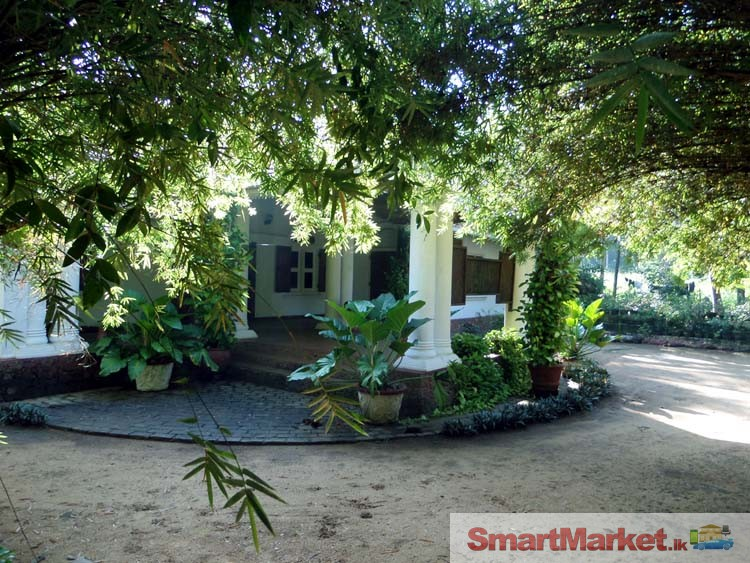 Valuable colonial style house for sale for Colonial style houses for sale
