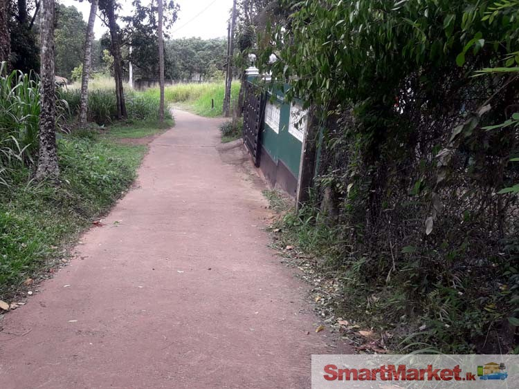 Land for Sale in Imbulgoda, close to Kandy Road