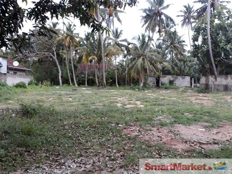Valuable Property for Sale in Polhena, Matara.