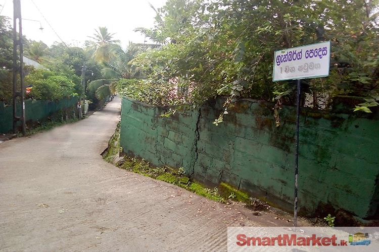 Prime Square Shape Flat Land For Sale at Maharagma