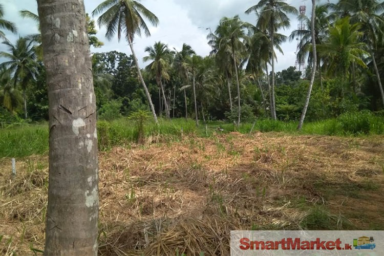 3 Lands for Sale in Thulhiriya, Alawwa.