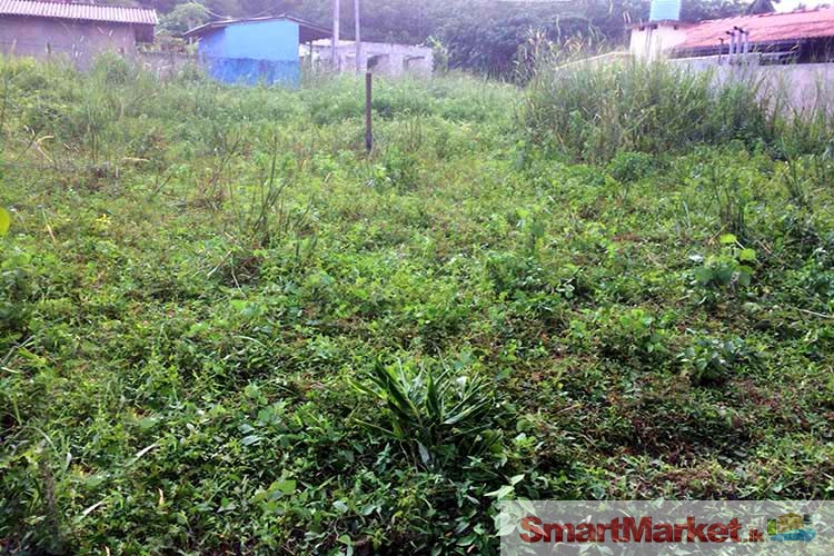 12.5 Perches Residential Land Available for Sale in Dompe.