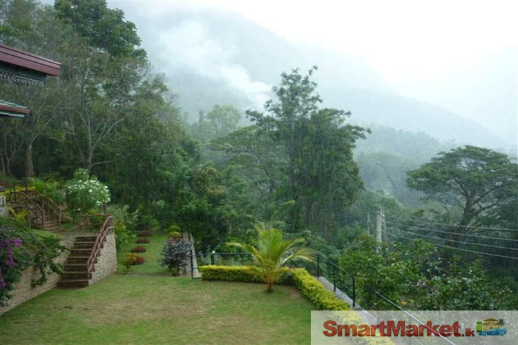 5 Acres Land with Bungalow for sale at Beragala, Haputale.