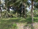 30 Acres Land for Sale in Rambukkana