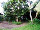 36 Perches FLOOD FREE square shape land  for Sale in Akaravita, Gampaha.