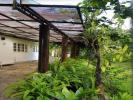 60 Acres Rubber Estate in Keenagahawila, Ratnapura.