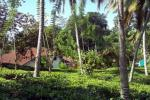 60 Perches Residential/ commercial Land for Sale in Ratnapura.
