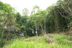 Valuable 46 Perches Land for Sale in Kegalle