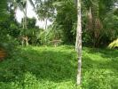 LAND FOR SALE IN MAELIYA