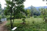 40 Perches Land for Sale in Bandarawela